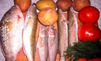 Уха из 4х видов рыб